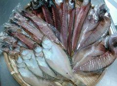 エテカレイ - カマス - アジ - タイ - クロムツ干物セット(5種)
