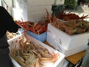 松葉ガニで鮮魚関係者は大忙し