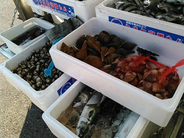 かやの鮮魚店移動販売