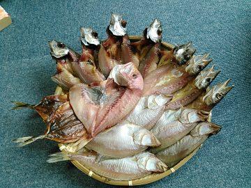 アジみりん干し – カマス – 真アジ – エテカレイ – レンコダイ 干物 5種セット