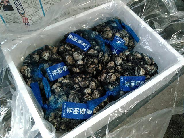赤貝(サルボウ貝)5kg