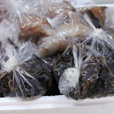 シジミ・冷凍