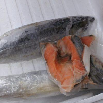 塩鮭切り身