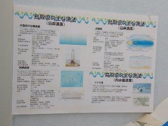 漁法 パネル