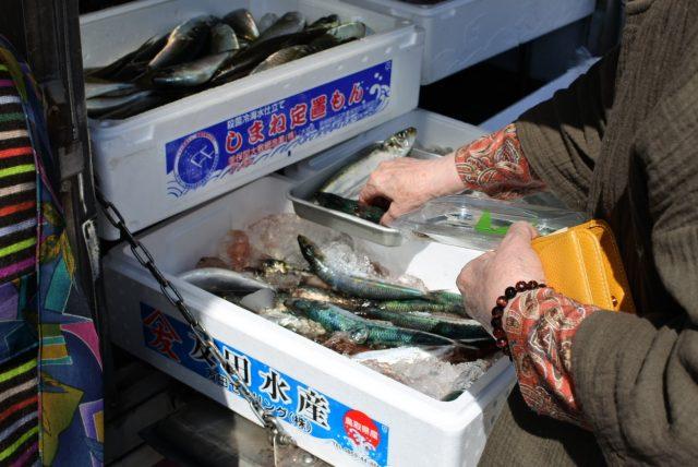 鮮魚 移動販売