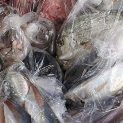 鮮魚宅配サービス