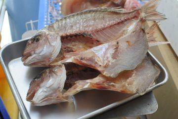 かやの鮮魚店 自家製 タイ一夜干し
