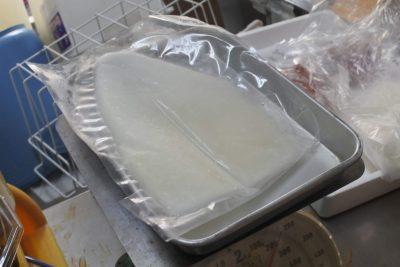 シロイカ刺身 用 冷凍